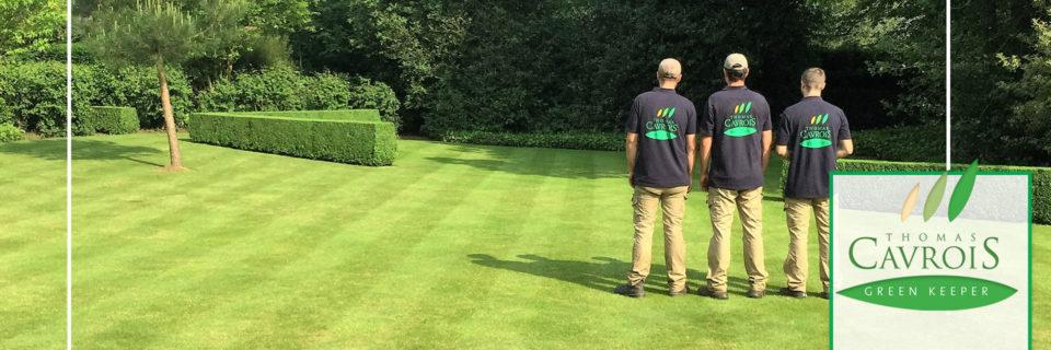 Entretien gazon & espaces verts